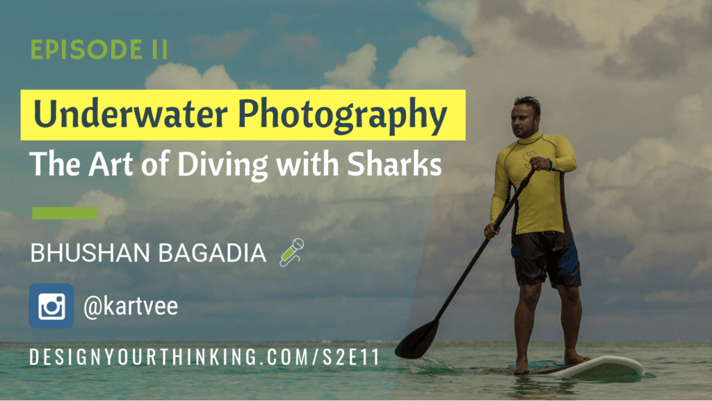 underwater photography diving with sharks